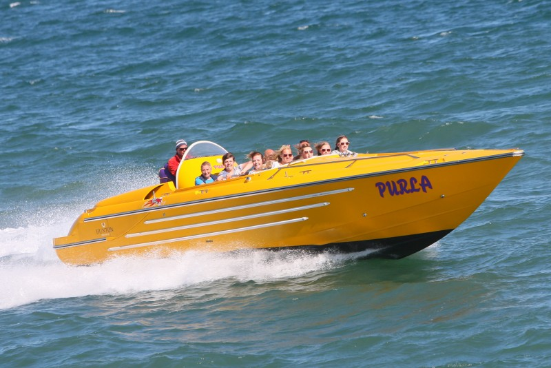 Scream if you want to go faster, fun on speedboat rides.