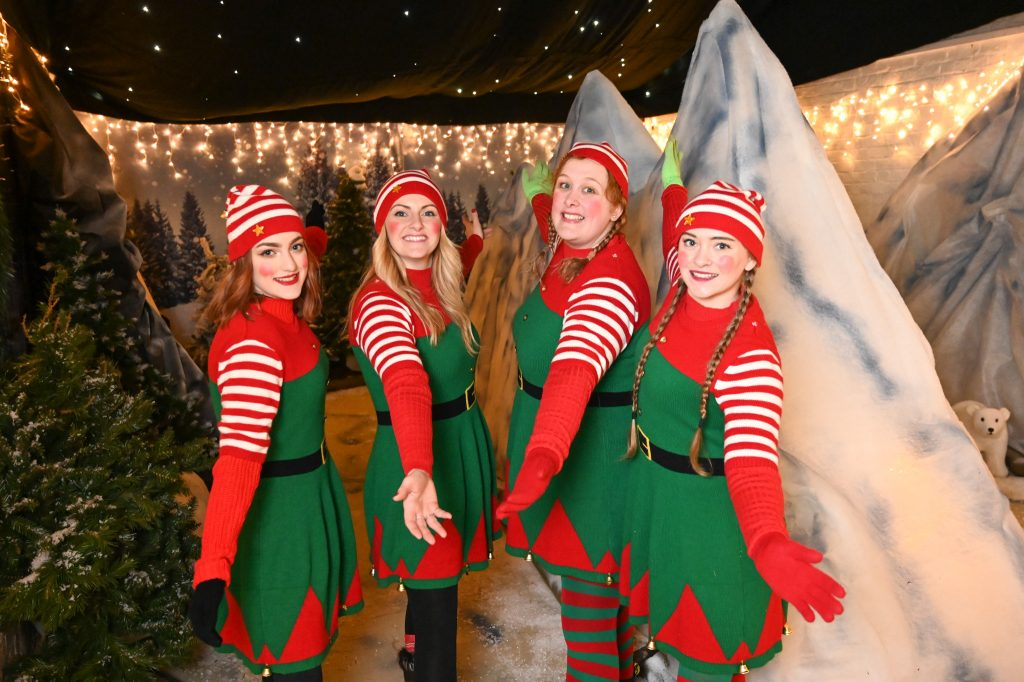 Magic Beyond Belief: A Magical Christmas Show Starring